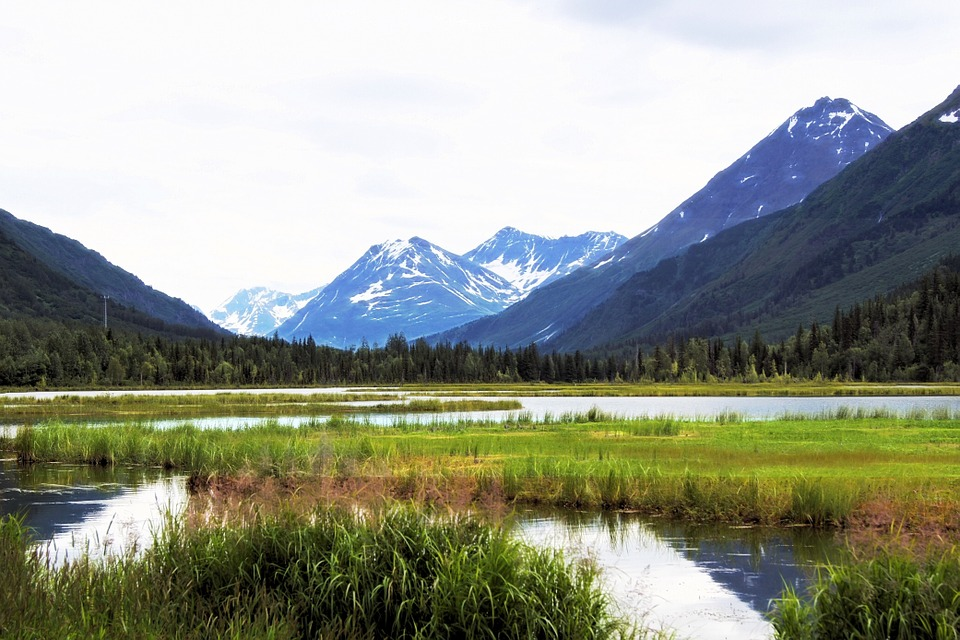 You haven't lived until you've seen the beauty of Alaska nature.